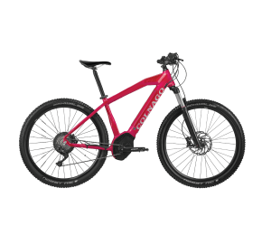 ΠΟΔ/ΤΟ COLNAGO 29 E2.03 10V 46 CX5IP RED