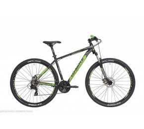 PATWIN 1725 MT BLK GREEN